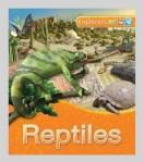 explorers reptiles
