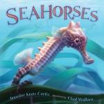 seahorses curtis