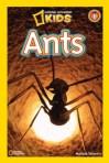 nat geo ants