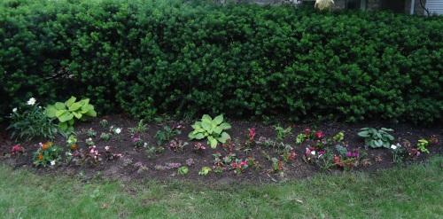 piano garden 010 ed