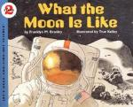 what is the moon like